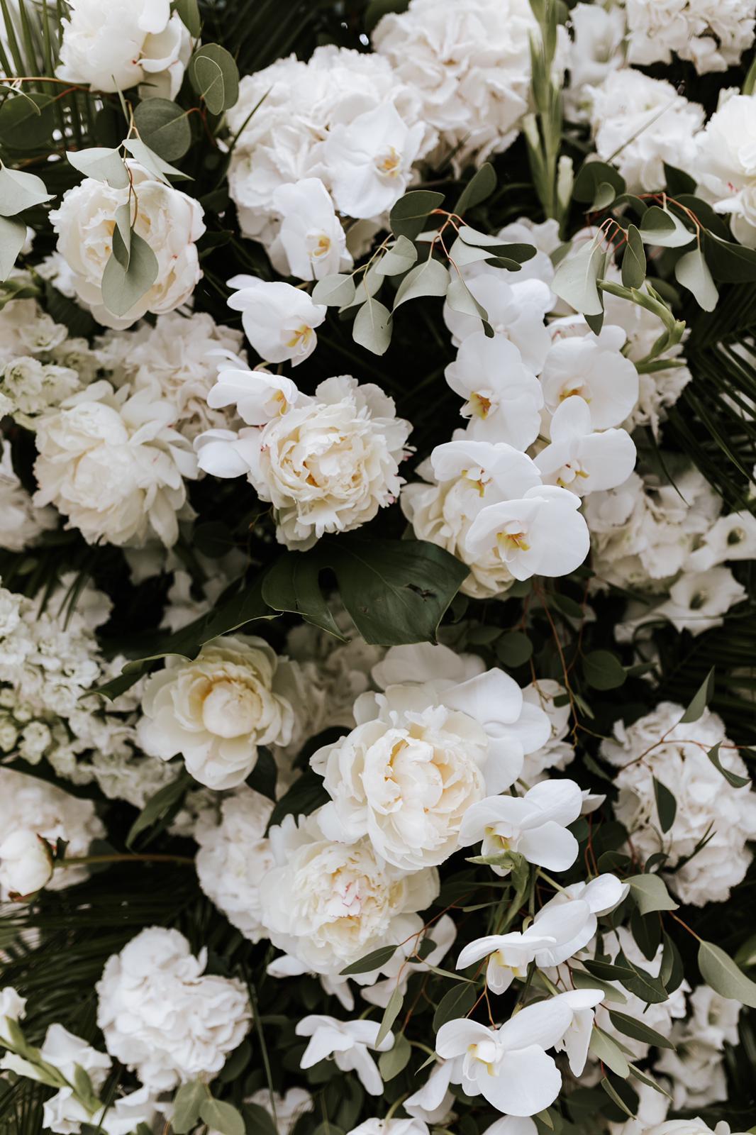#apbloem #florist #bloemist #amsterdam #bloemenwinkel #kerkstraat #bloemen #flowers #weddingstyling #bruiloft #trouwen #liefde #bride #wedding #marriage #bruidsboeket #floraldesign #mordernwedding #modernbride #greenhouse #kas #planten #styling #interiorstyling #white #wit