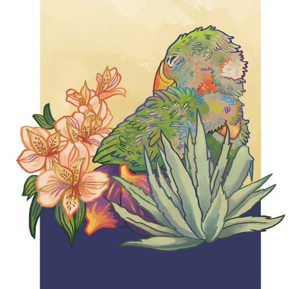kat-flores-illustration-parrot-home.png