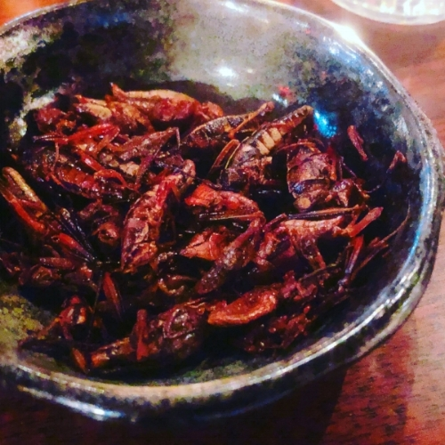 Chapulines (toasted and seasoned grasshoppers) with lime and chili.