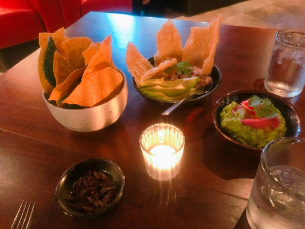 Bottom left: Chilaquiles | Top left and center: Chips with the rock ceviche | Right: Guacamole