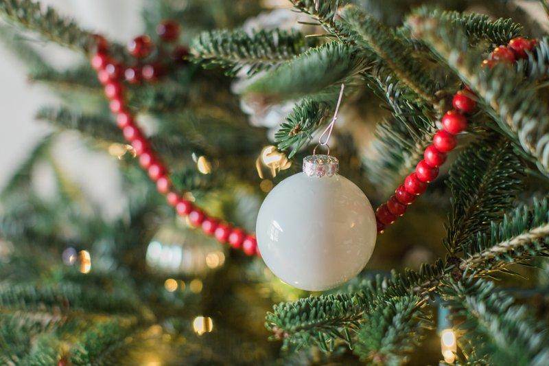 2016 Christmas Tree 6.jpg
