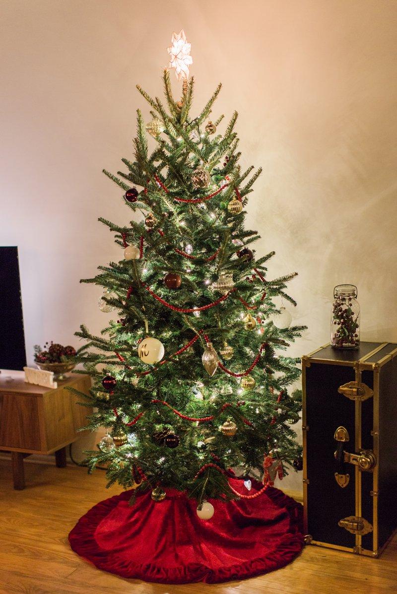 2016 Christmas Tree 7.jpg