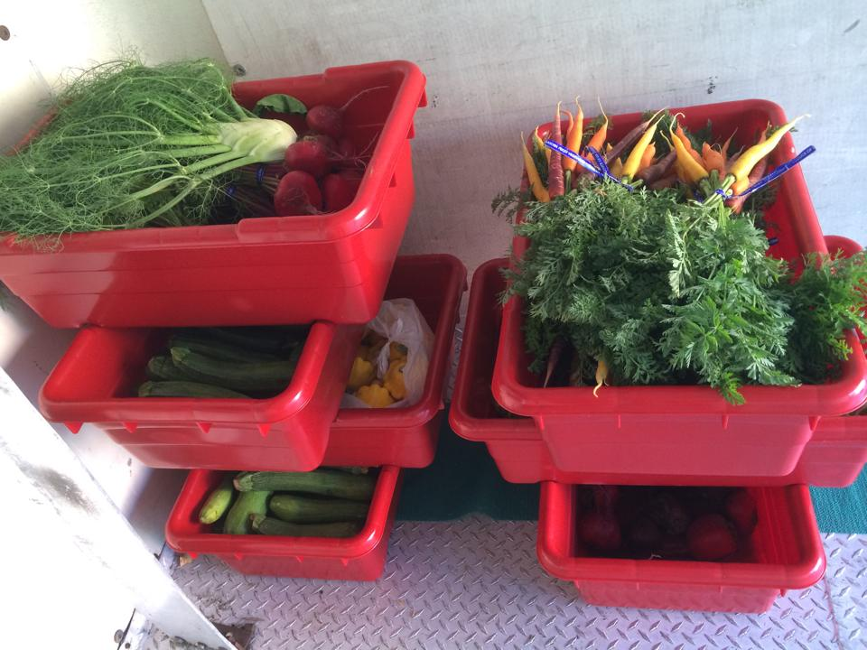 Awesome local veggies awaiting delivery on the LINC Foods truck.