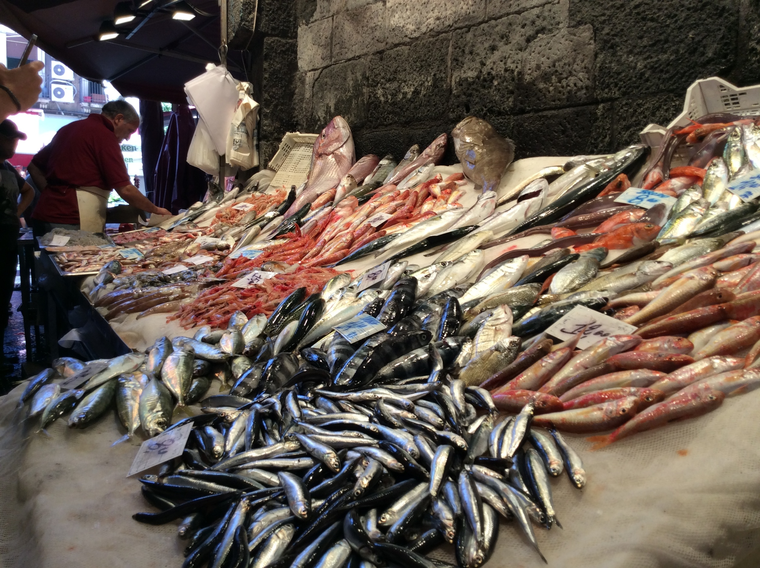Visit to historic fish market