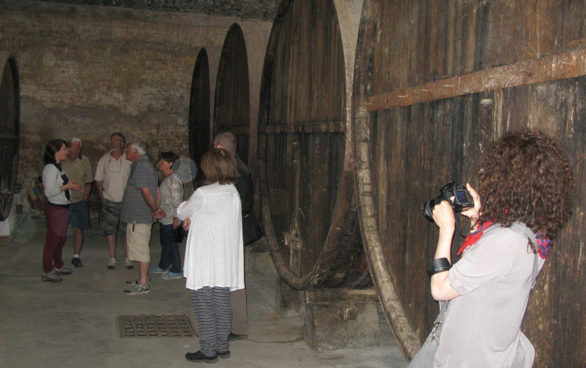 expert wine guide
