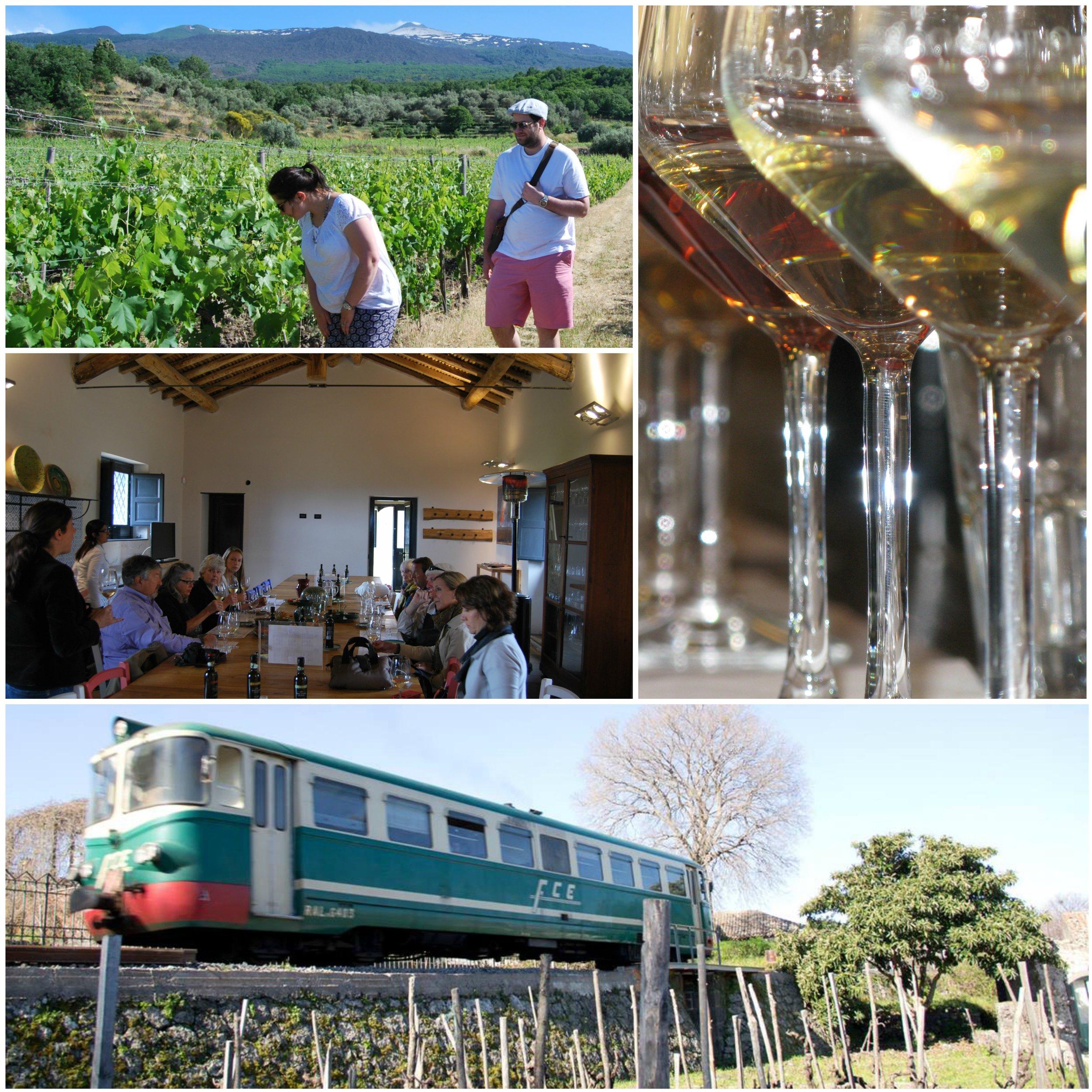 train-etna-wine_etna-wine-lab