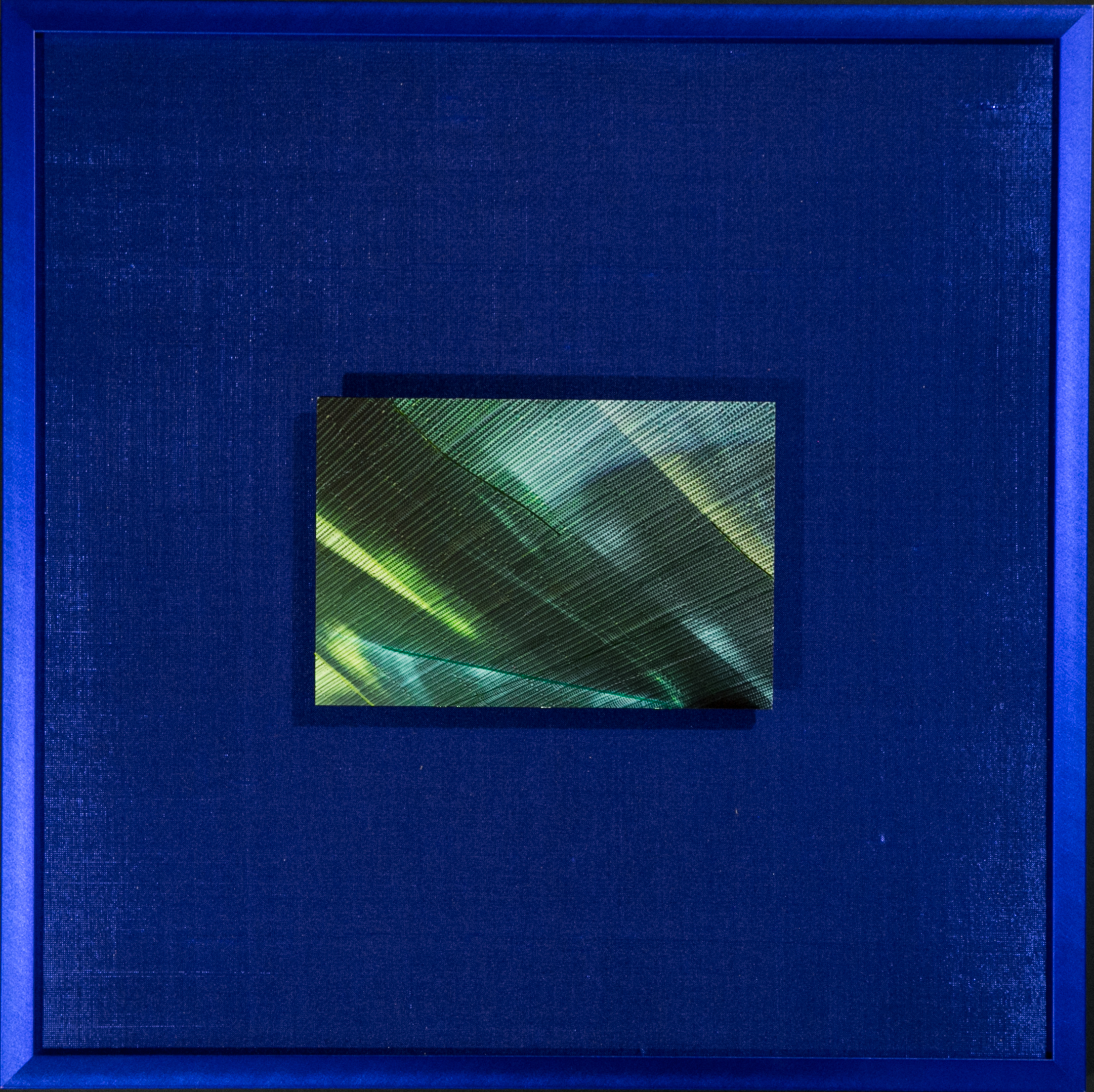 "Chroma Series    Cobalt   14"" Sq  Metal Print with Silks  2018"