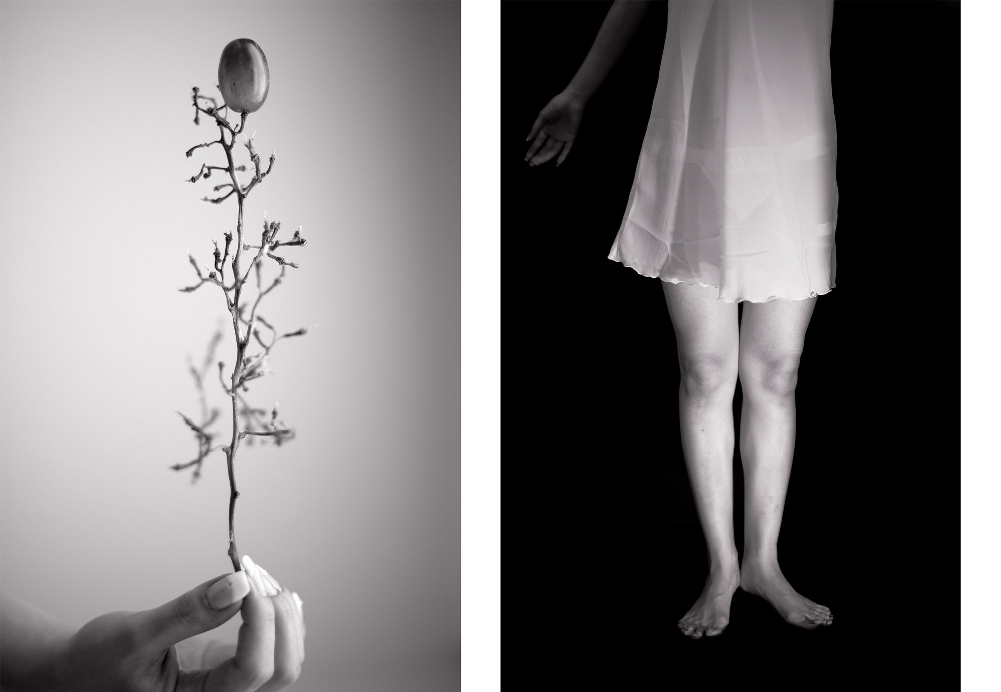 """Untitled, diptych   (2012) two archival pigment prints 18"""" x 12"""" each"""