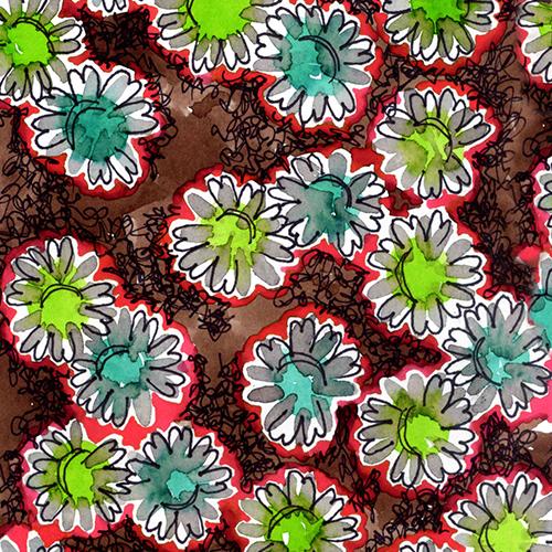 daisies coral NoH20 June2017.png