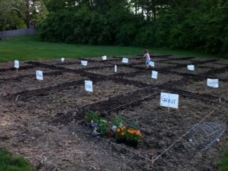 Garden plots.JPG