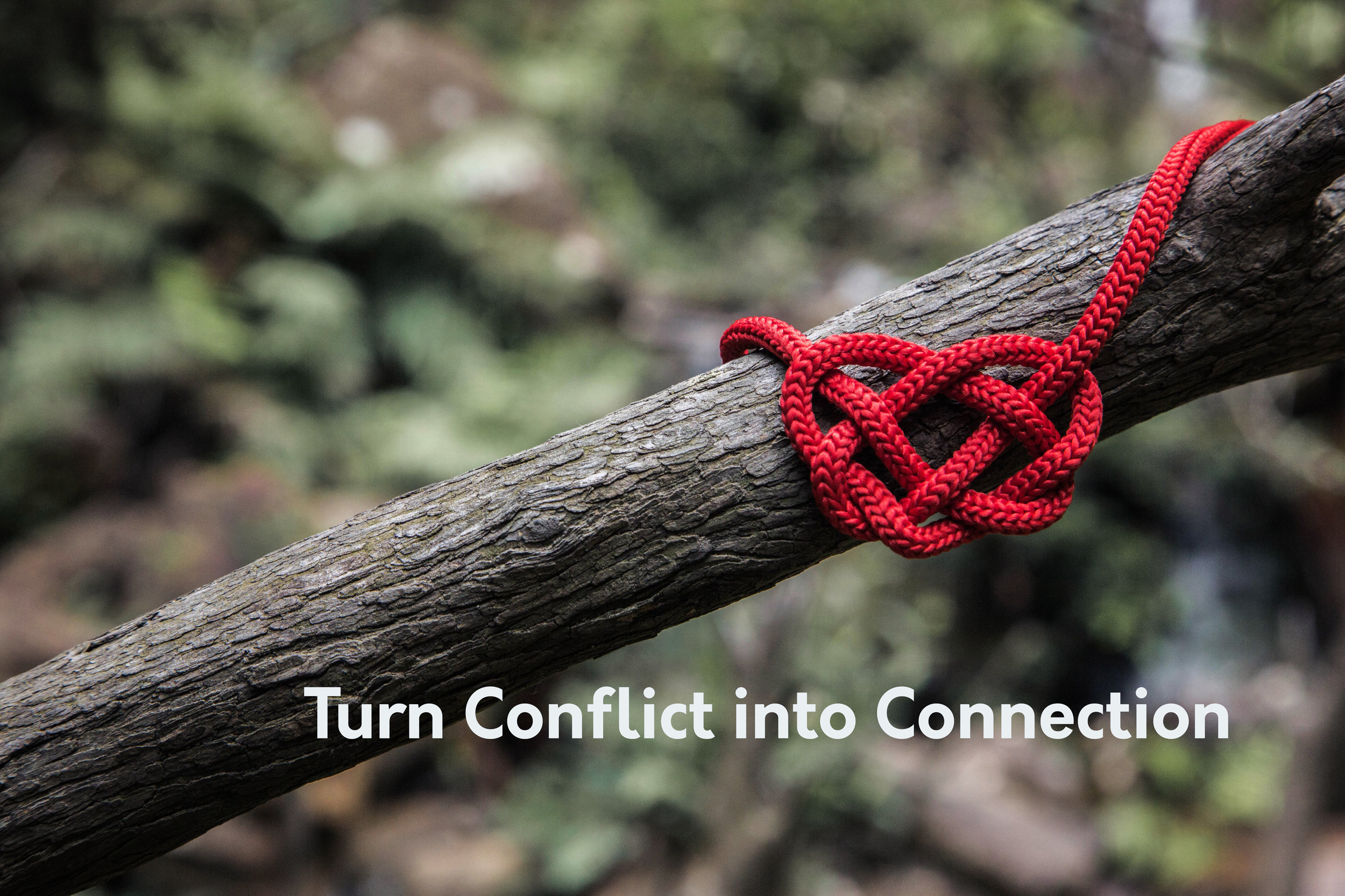 Turn Conflict Into Connection.jpg