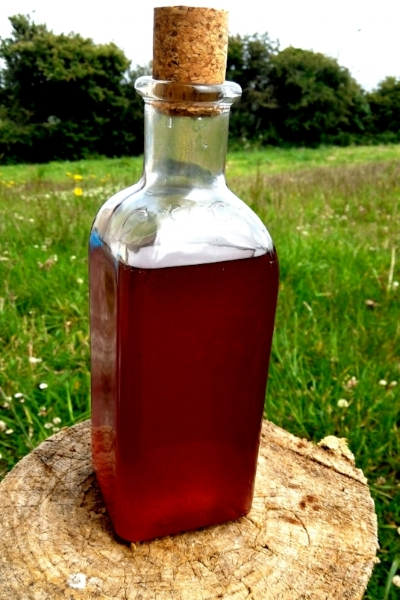 Violet infused syrup, delicious!