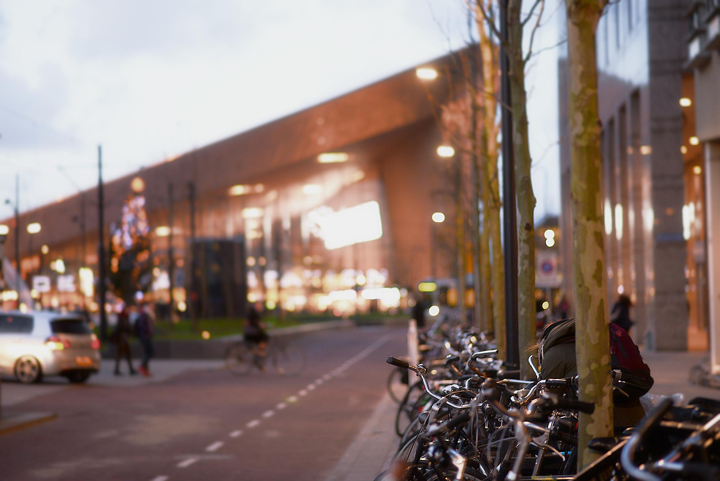 Rotterdam - 05.jpg