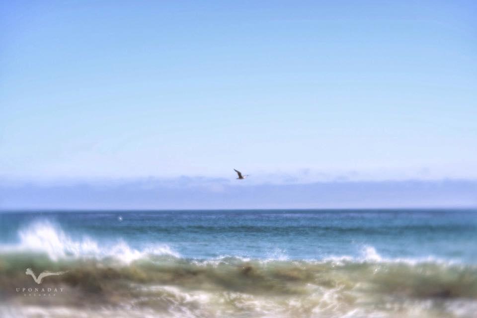California coast line.