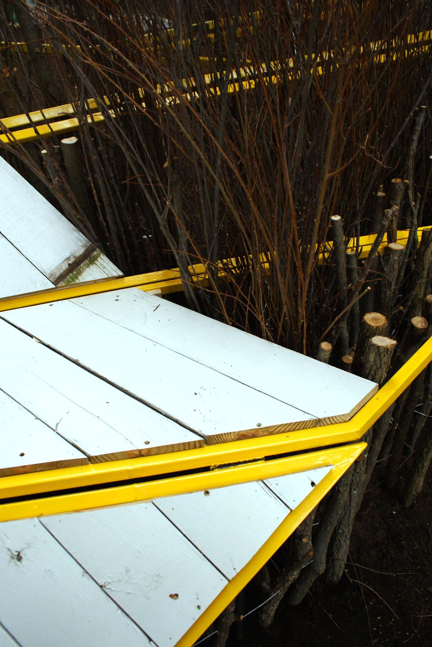 hedge detail.jpg