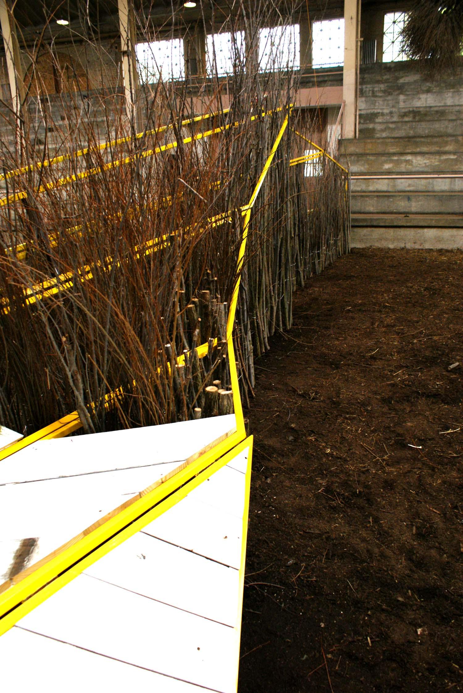 hedge detail_2.jpg