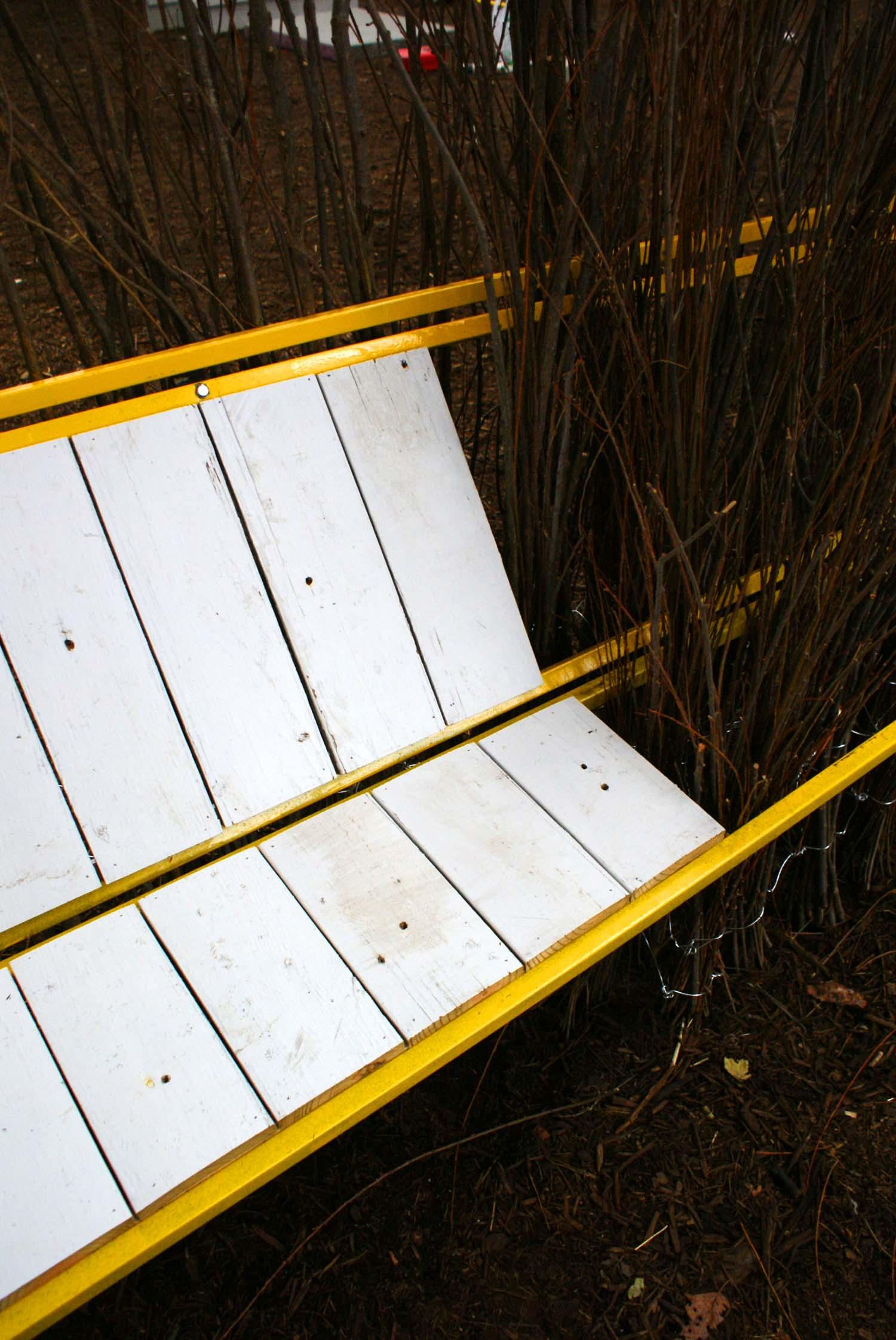hedge detail_3.jpg