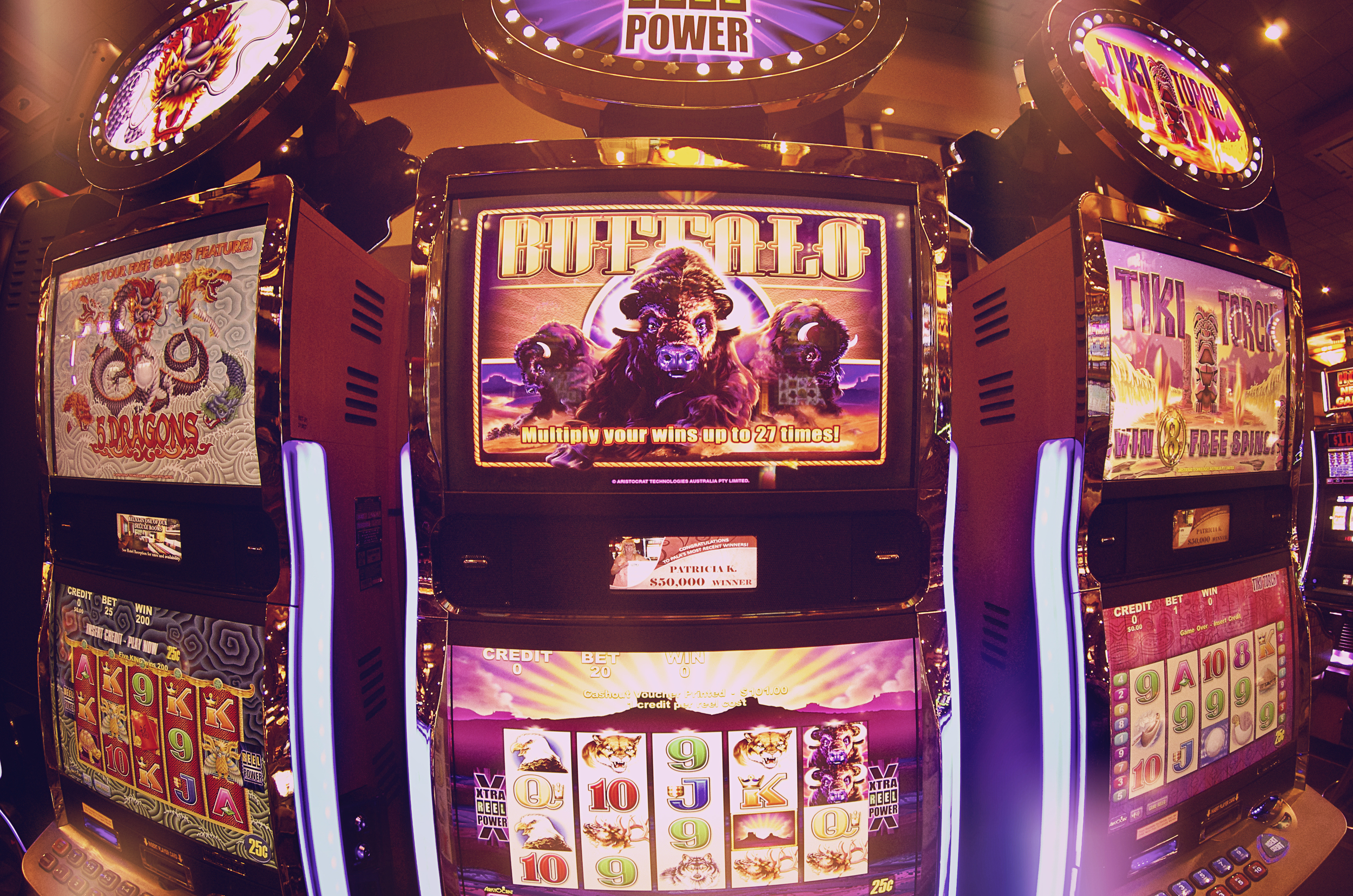 This Buffalo slot machine was calling our name.