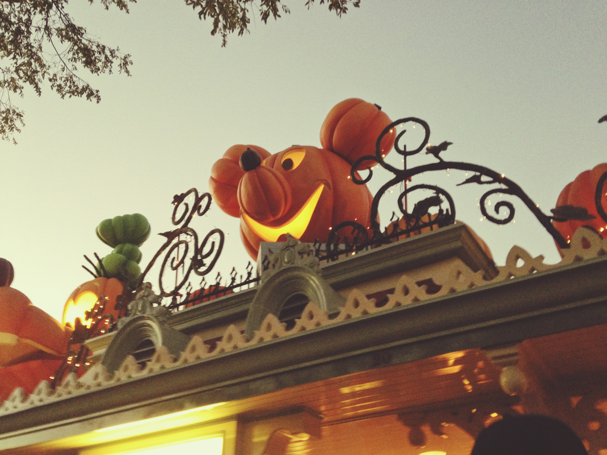 We got to briefly check out the Halloween decorations. They'll probably be swapped for Christmas decorations by the time we get back here!