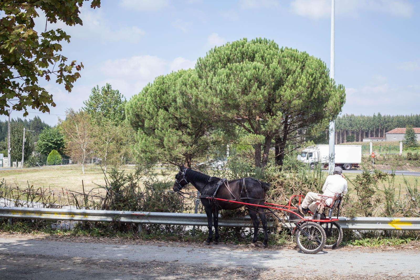 Un peregrino a caballo muy cómodo