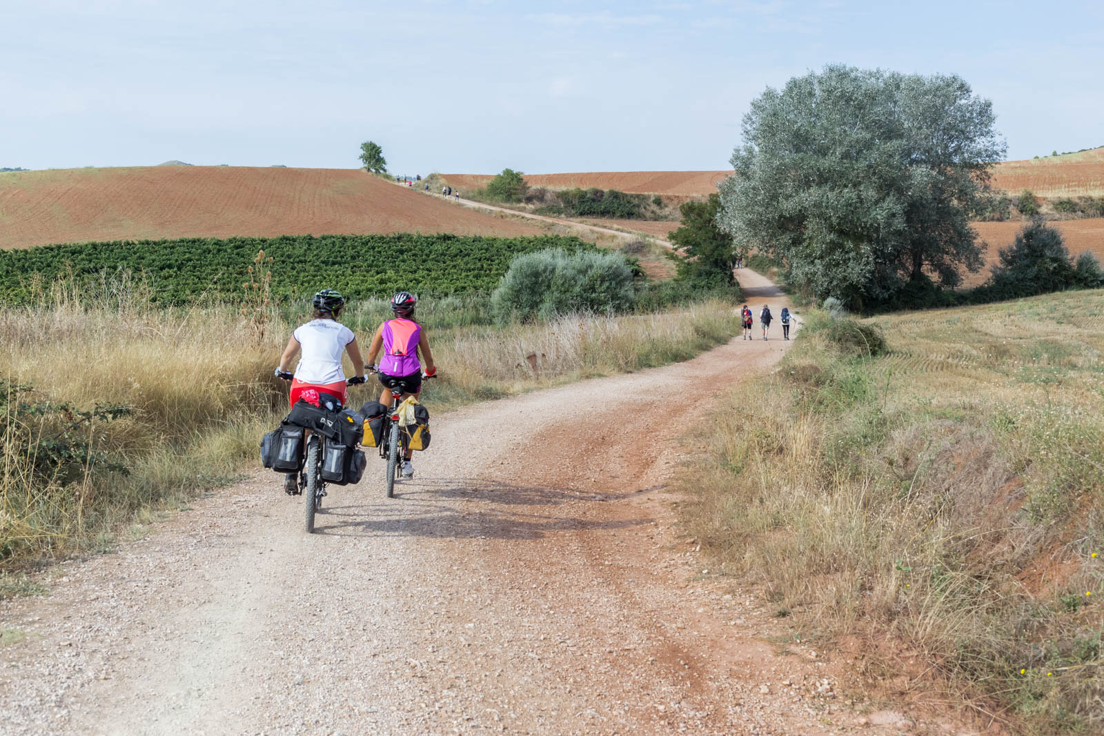 IG - Camino de Santiago copyright Ivan Blanco Vilar LR-7378.jpg