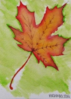 leaf michayla 2.JPG