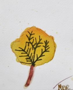 leaf maeve 1.JPG