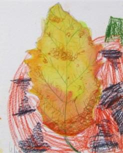 leaf elizabeth.JPG
