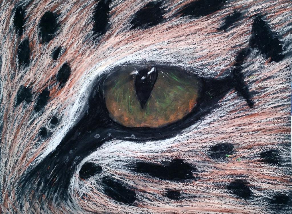 eye anna.jpg