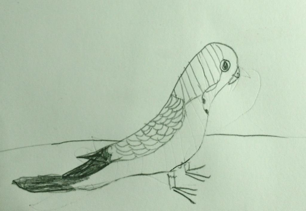 bird sketch tanya.jpg
