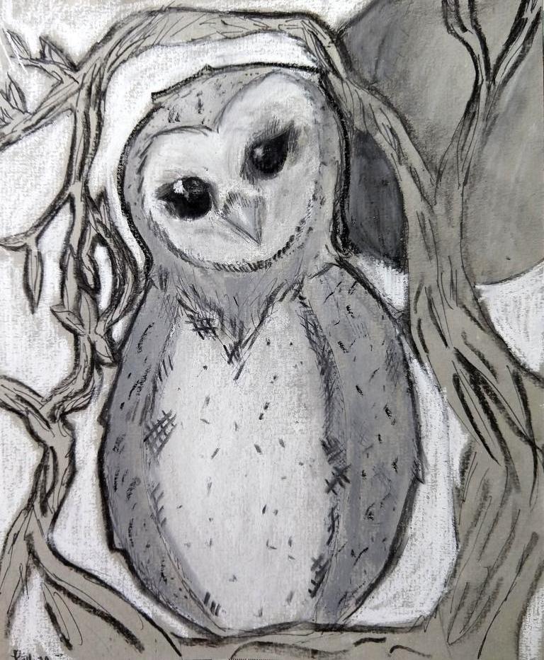 owl rhema.jpg