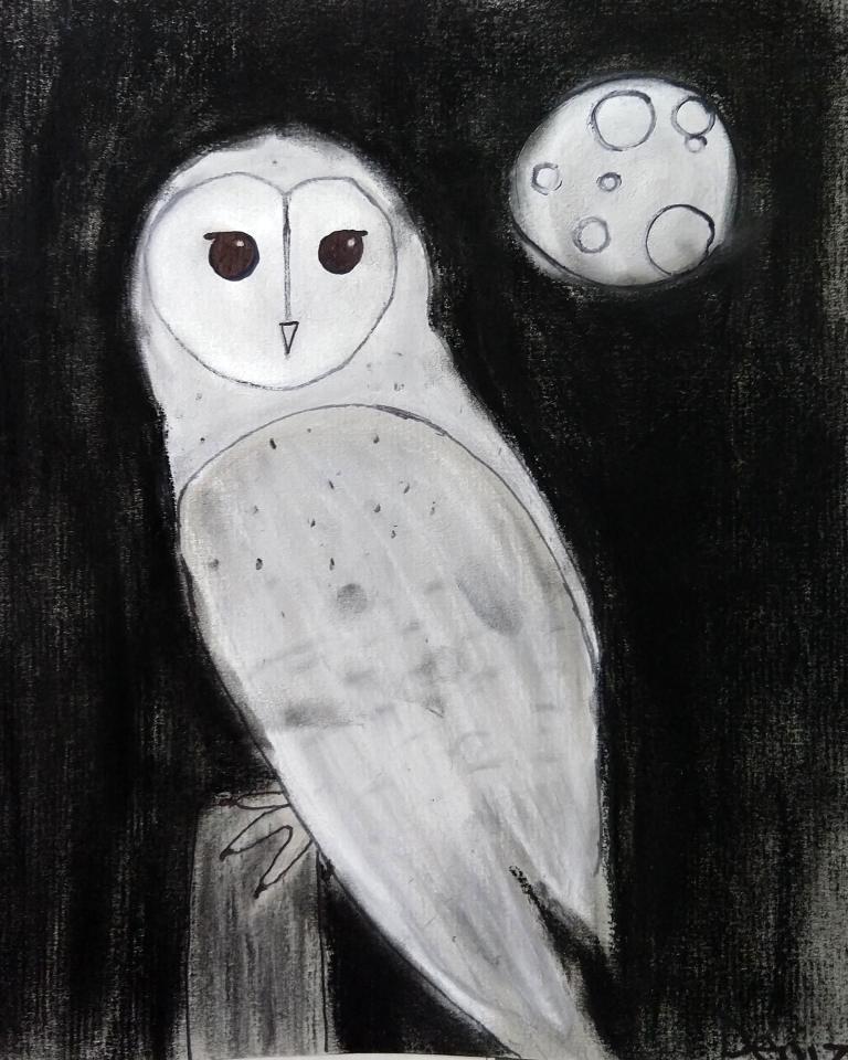 owl+deniz.jpg