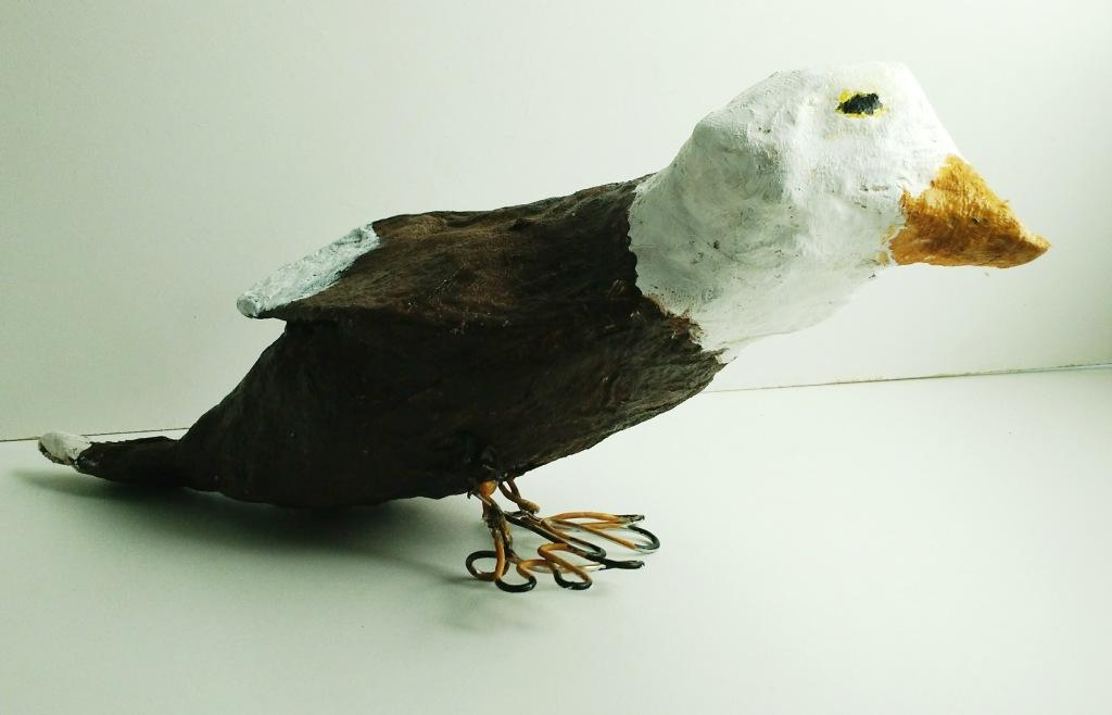 pm bird aidan.jpg