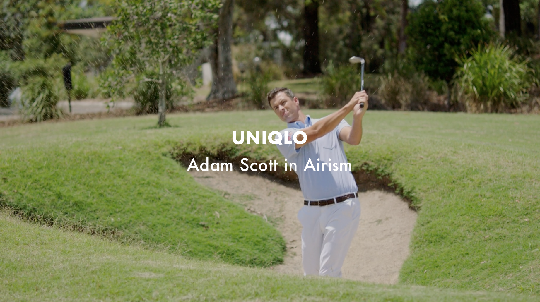 Uniqlo - Adam Scott