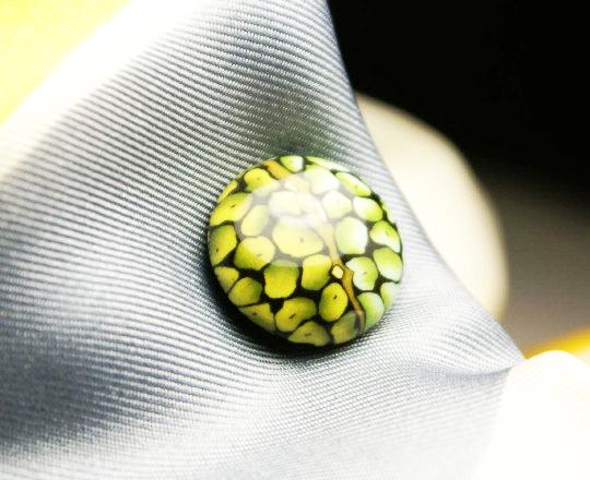 Lizard eye magnetic tie tack MagTAK lapel & hat pin