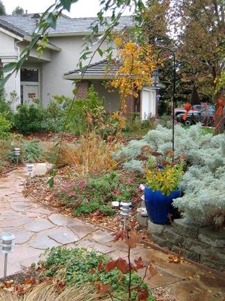 Pot and walk w CA Black Oak.jpg
