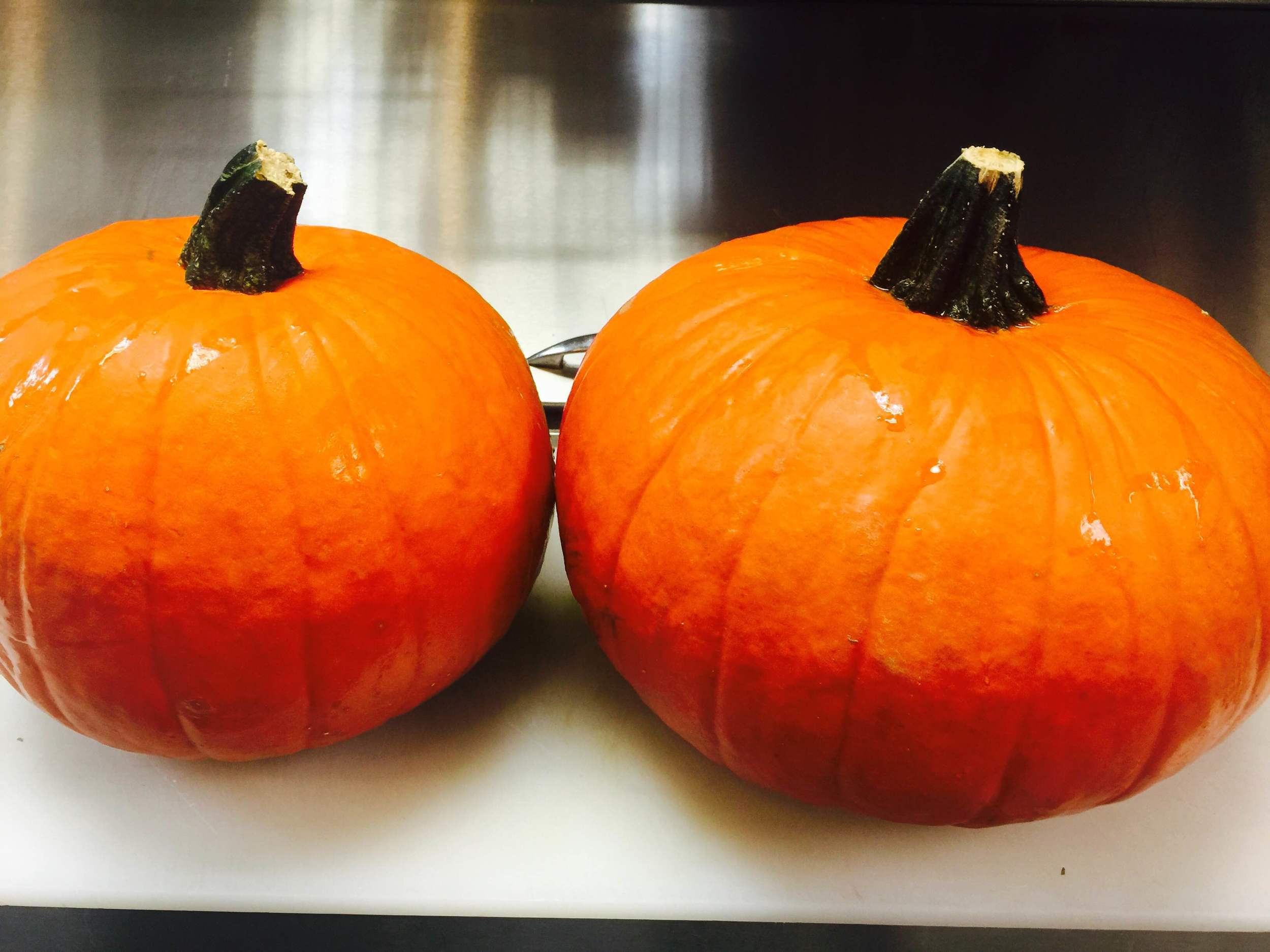 DOE Dojo pumpkins.JPG