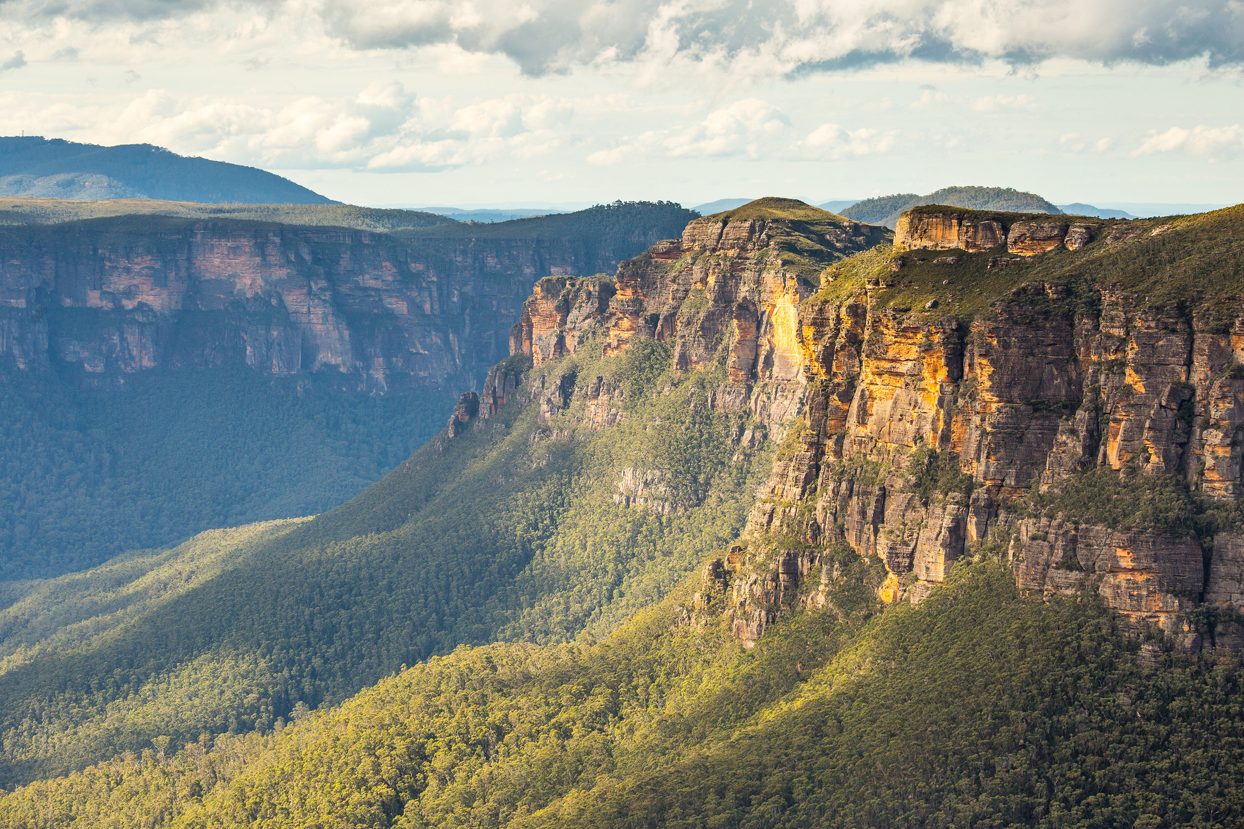 Blue Mountains -