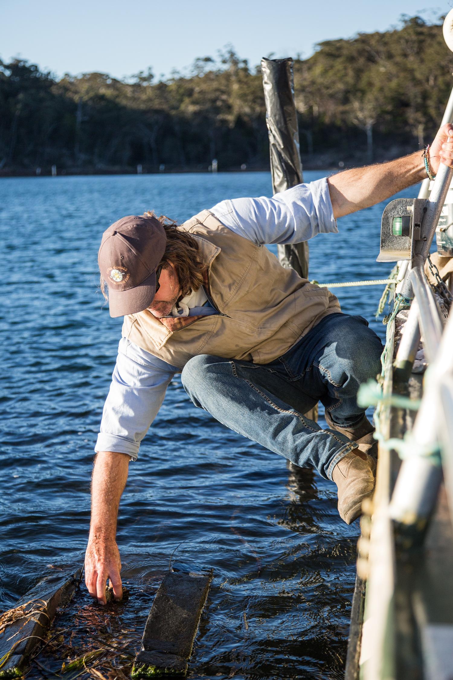 Captain Sponge's Oyster Farm - Destination NSW