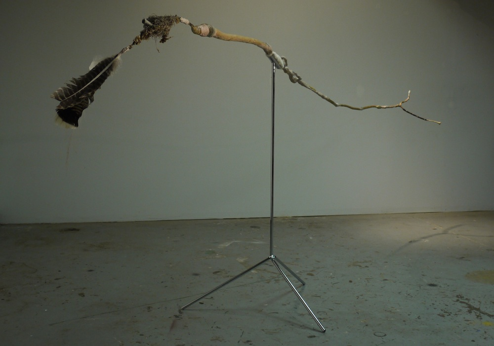 The Dollar Bill Trick, 2012, 3'X4.5'X15', sticks, Bondo, wax, steel, granite drill core, moss, dollar bill, armadillo tail, feathers, bones, teeth, all collected roadside while cycling from California to Florida, chromed steel stand with felt pad