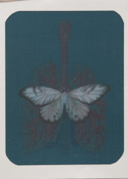 Hao Liang 郝量, Dissection Series-9 移用解剖学-9, 2011, Ink and color on silk 绢本重彩, 17.5 x 14 cm