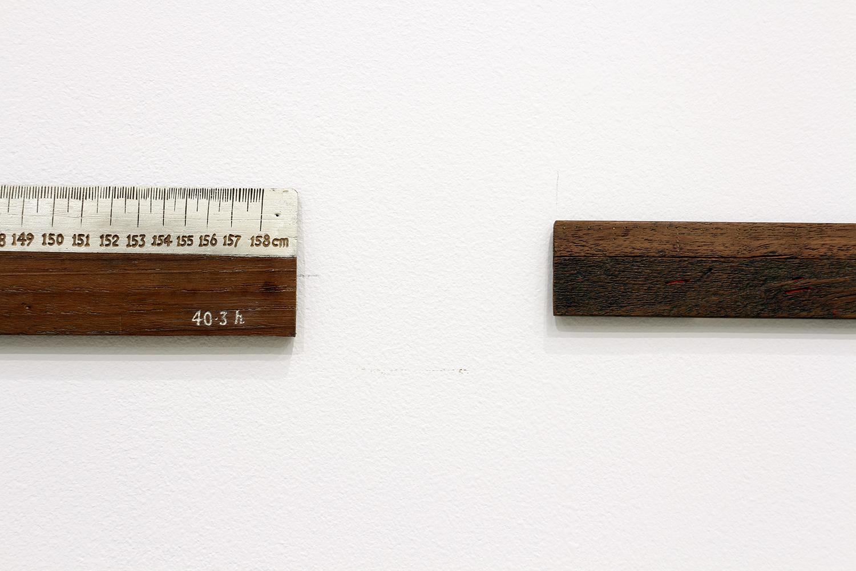 """Ni Youyu 倪有鱼, """"Ruler"""" """"尺"""", 2012 - 2013, Detail 细节"""