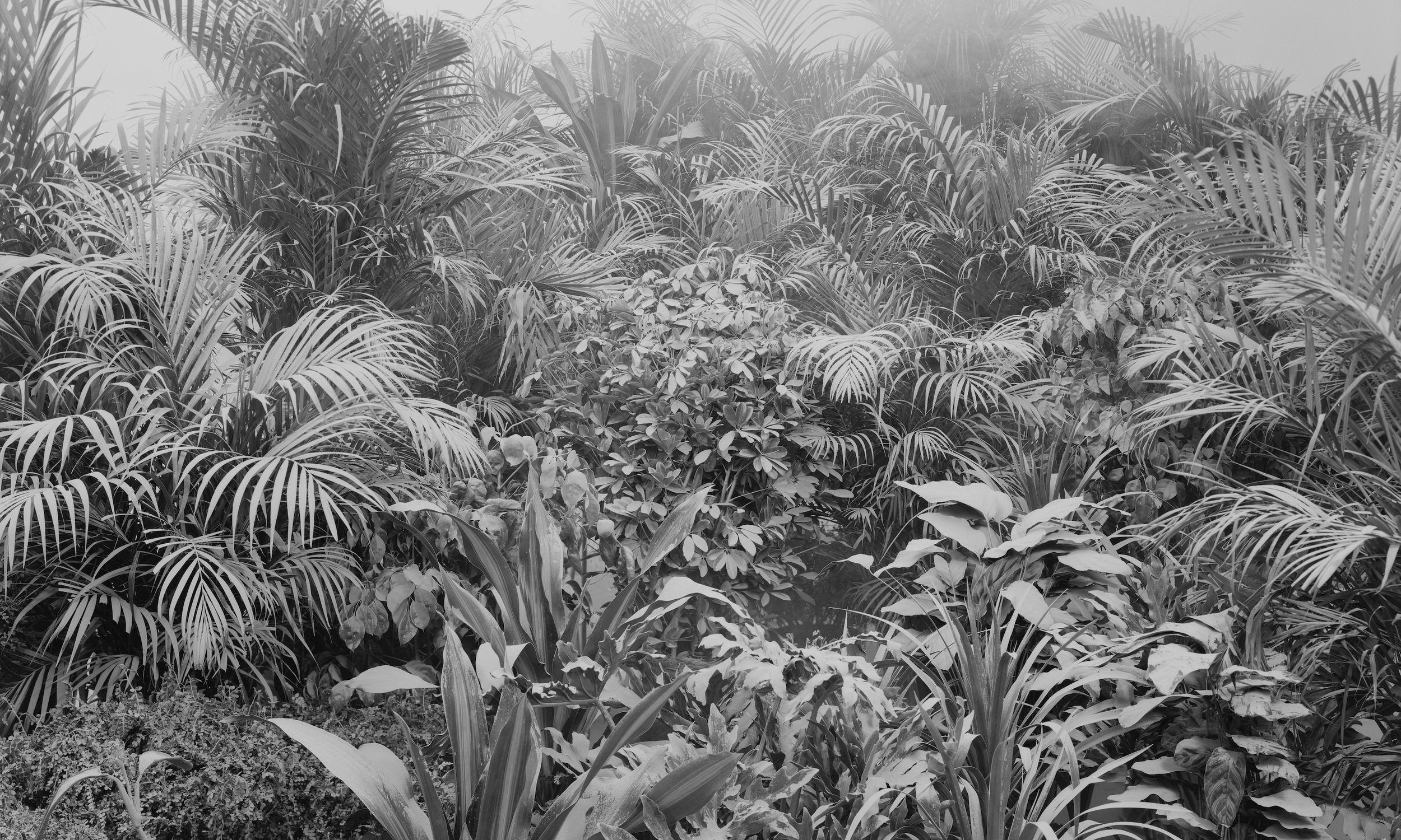 Ji Zhou 计洲, Dust No.4 尘之四, 2011, Ultra Giclee 艺术微喷, 150 x 250 cm