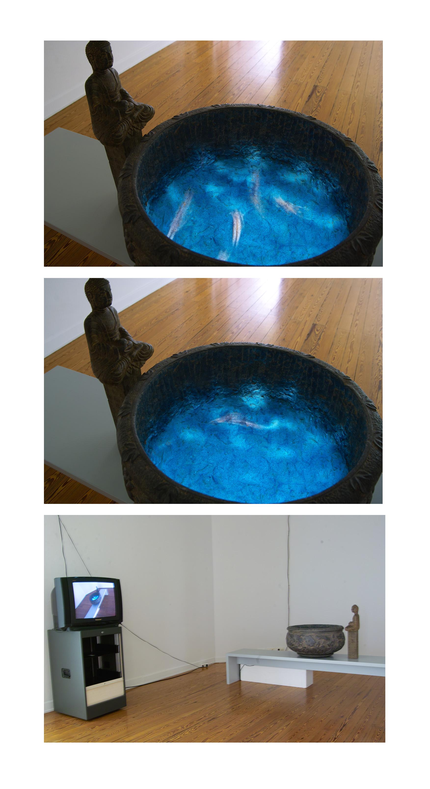 Zhou Jinhua 周金华, Wait and See 静观其变, 2009, Video Installation 影像装置
