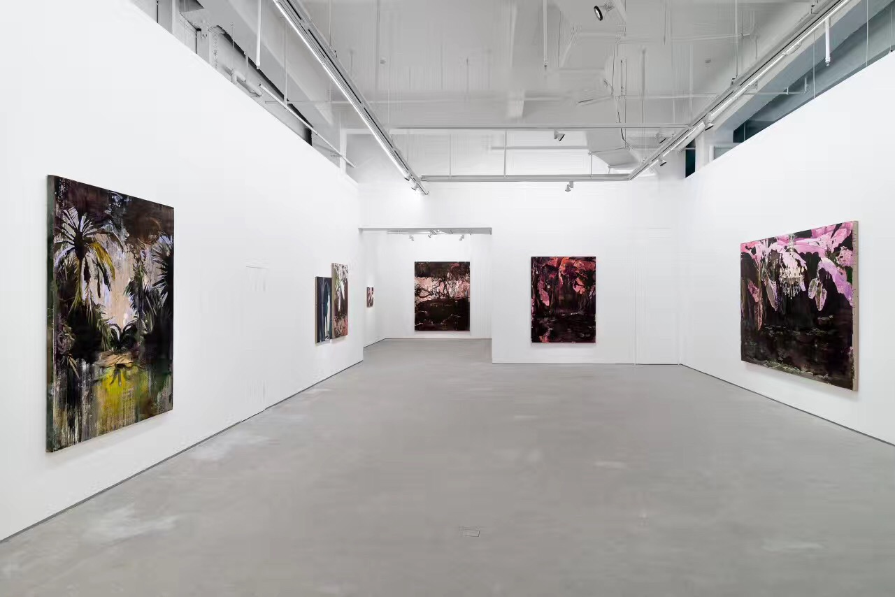 Don Gallery Shanghai.jpg