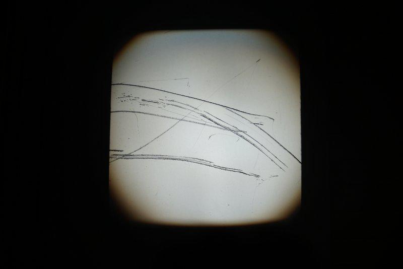 74-DSC04089.JPG