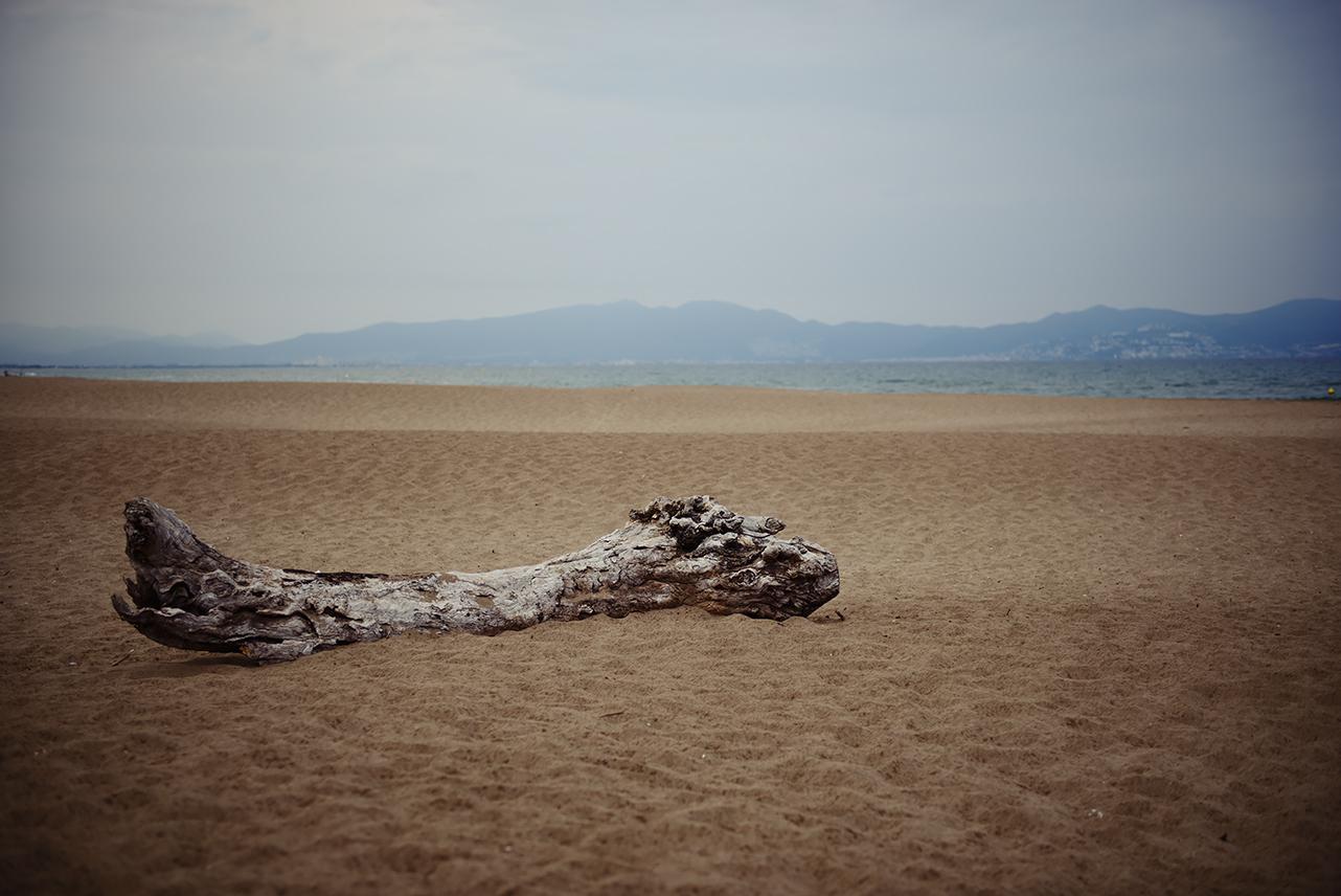 Spanien_2014_011_1280px.jpg