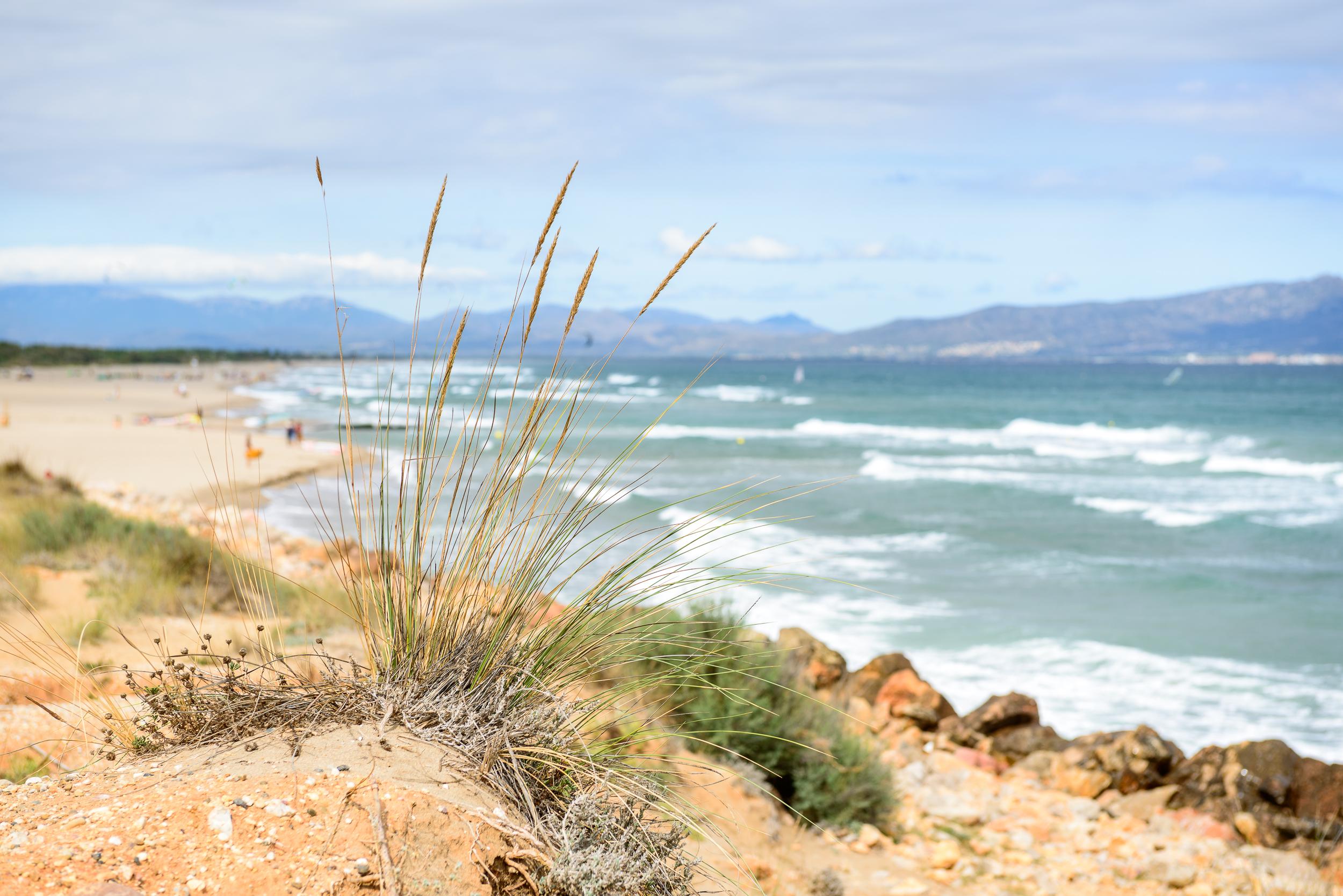 Strand bei Sant Martí d'Empúries