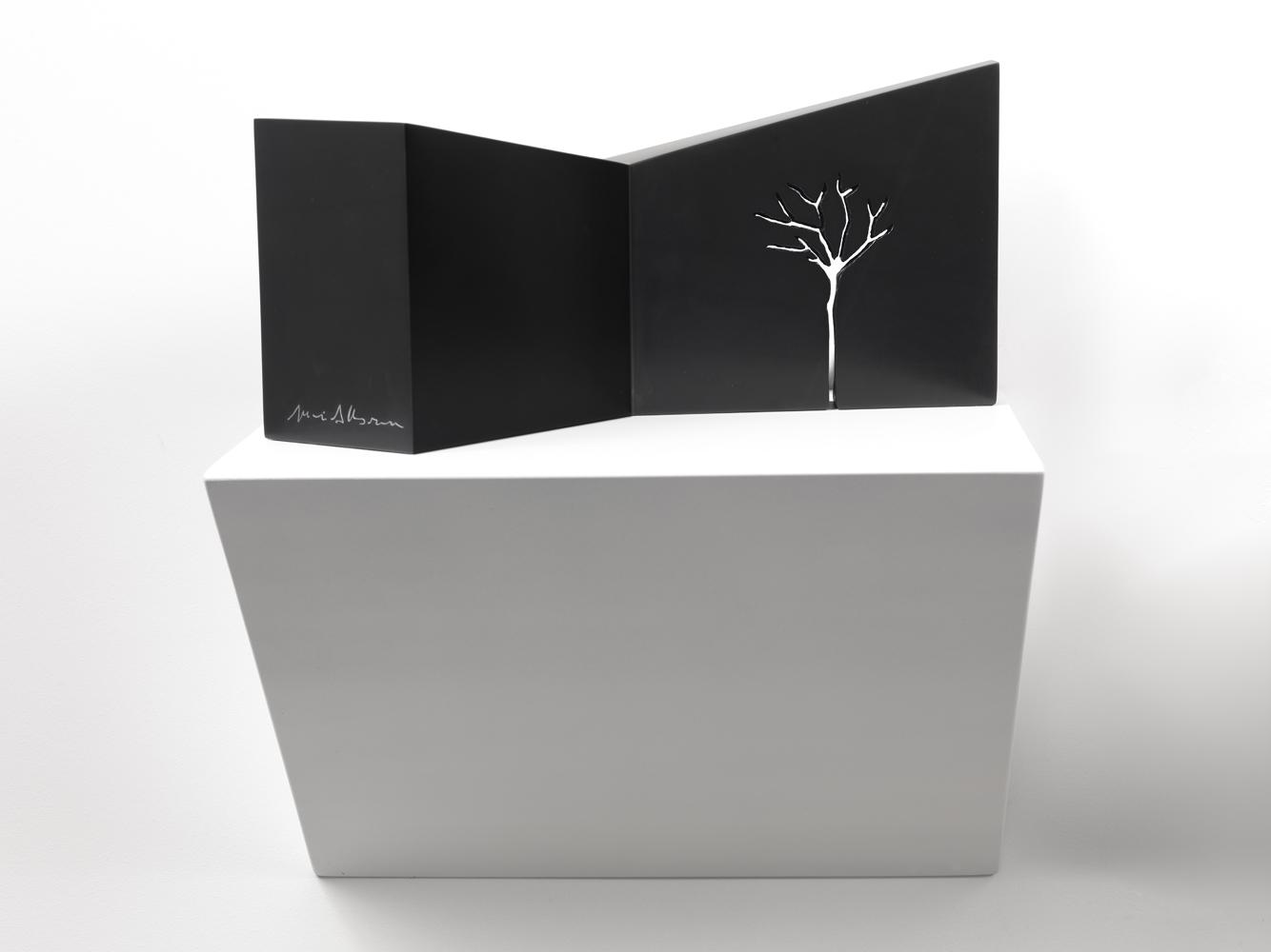 m- arbre  2, 2012marmo nero di Belgio/black belgian marble