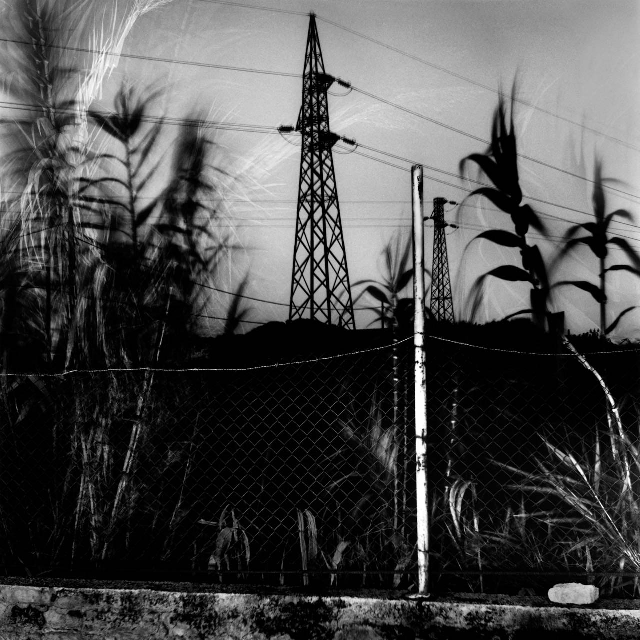 Casa Langella, Cuma, 2001 Stampa digitale su carta Hahnemuhle, cm 100x100 / 120x120 / 140x140 (ed. 6 + 1AP)